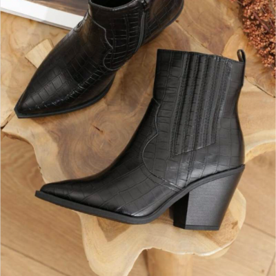 Western boots reptile